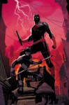 Highlight for Album: Daredevil Volume 5 Previews