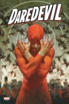 Highlight for Album: Daredevil Volume 6 Previews